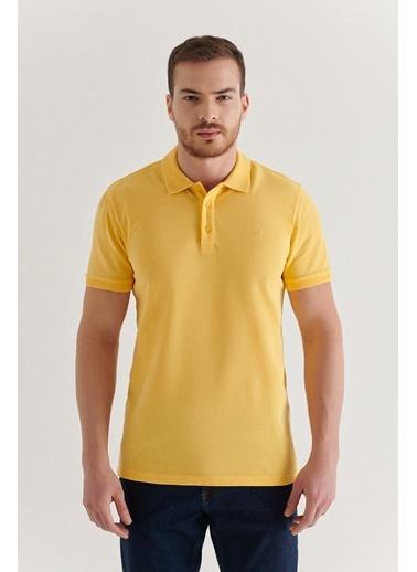 Avva Erkek  Polo Tişört A11B1146 Sarı